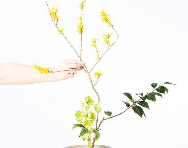 The Way of Flowers – Monica Takvam
